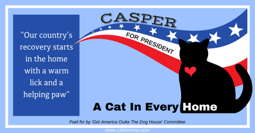 """Our country's recovery starts in the home with a warm lick and a helping paw."""