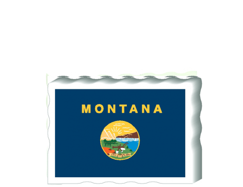 State Flag & Facts Postcards