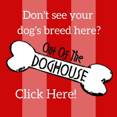Email us a request for your dog's breed.