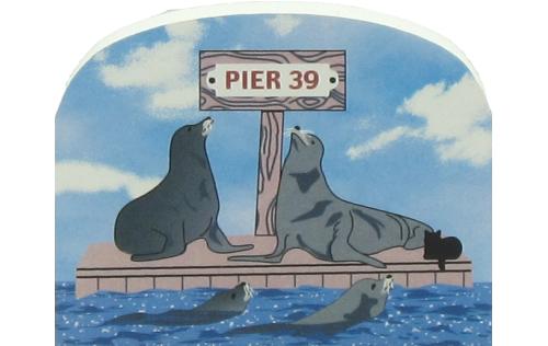 Pier 39 San Francisco Sea Lions, California