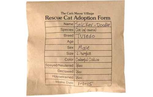 Your Cat's Meow Rescue Cat comes all wrapped up with a name and adoption form!