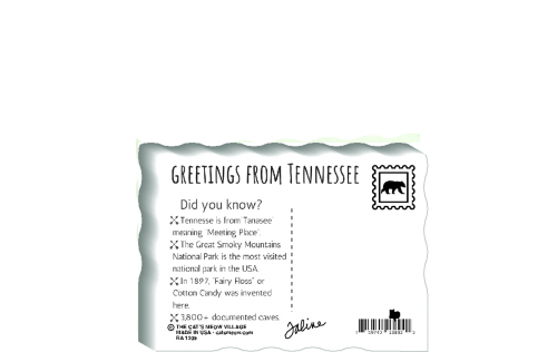 "This is the back of our 3/4"" thick postcard style Tennessee flag. It includes a greetings and facts about Tennessee. Crafted by The Cat's Meow Village in the USA!"