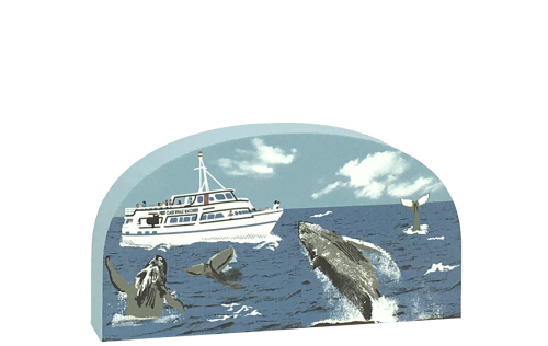 Humpback Whales off the United States coastline