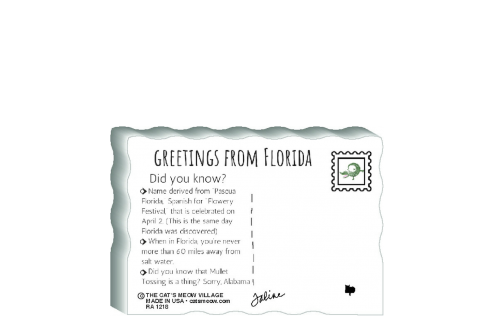 "This is the back of our 3/4"" thick postcard style Florida flag. It includes a greetings and facts about Florida. Crafted by The Cat's Meow Village in the USA!"