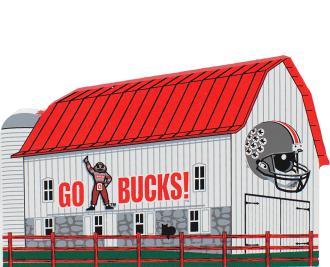 Buckeye Football, Scarlet & Gray, Ohio State, Ohio, OH-IO, Go Bucks, Brutus, Ohio State Alumni, TBDBITL