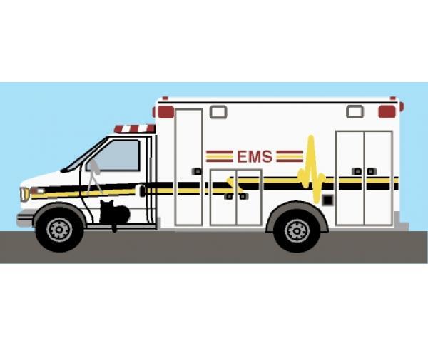 Cat's Meow EMS Rescue Squad, EMT