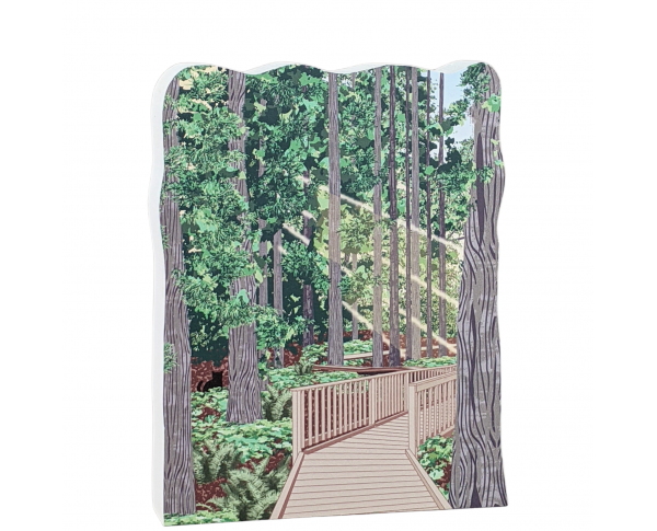 """Trail of Cedars, Glacier National Park, Montana. Handcrafted in the USA 3/4"""" thick wood by Cat's Meow Village."""