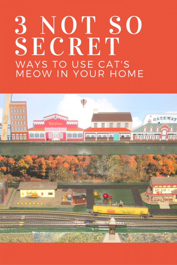 Read how 3 Cat's Meow enthusiasts use the village items in their homes.
