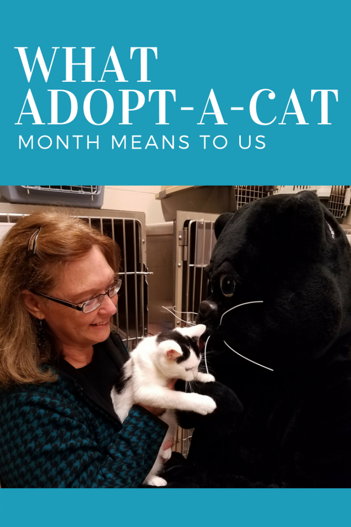 Learn how founder, Faline Jones, supports the local Humane Society through her Village.